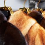 Чистка кожаных и меховых изделий