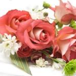 Закажите свежие цветы в любое время суток