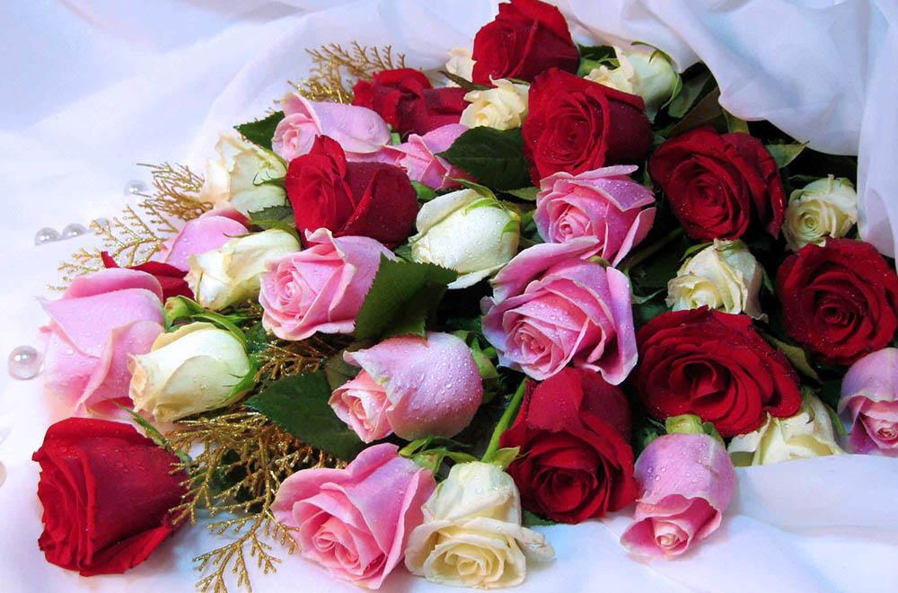 Как выбрать недорогие розы?