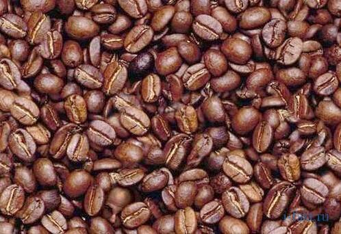 Факты о кофейных зернах